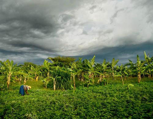rakai uganda farm