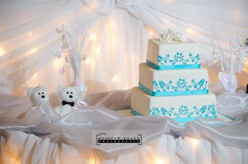 rosetta_mcclain_park_wedding_photos_17