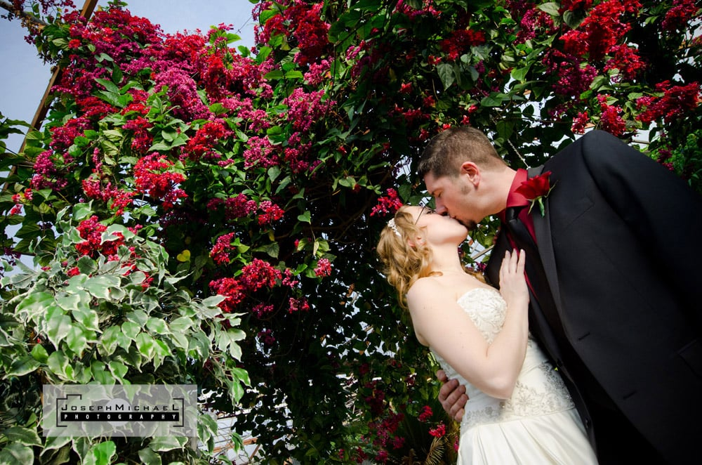 Madsen's Greenhouses Garden Centre Wedding Photography