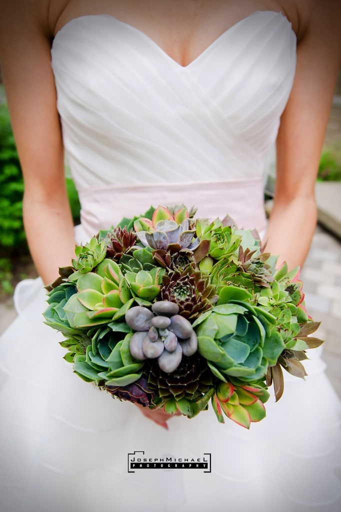 Succulent Bouquet Teaser Wedding Photos Bianca And Steve Professional Toronto Photography Joseph Michael Photography Wedding Engagement Corporate Portrait And Family Photography
