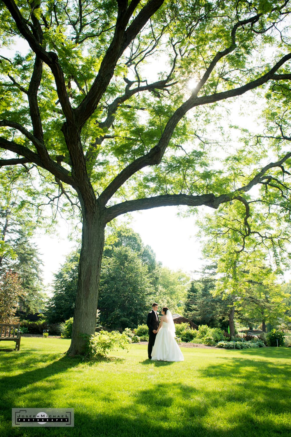 Royal Botanical Gardens Wedding Photography