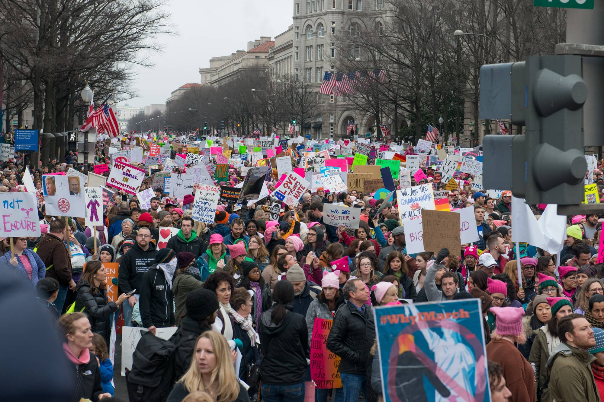 Womens_March_on_Washington_004