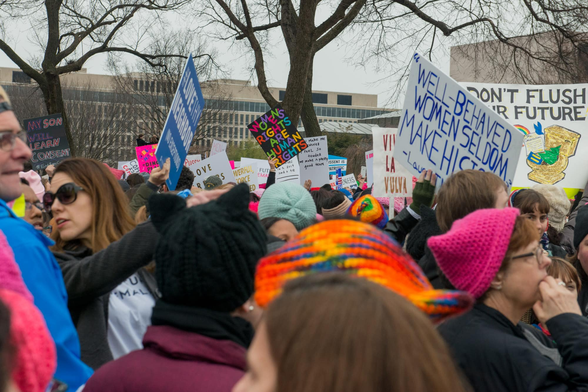 Womens_March_on_Washington_006