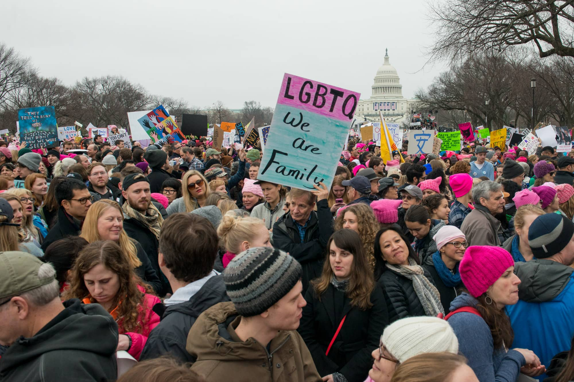 Womens_March_on_Washington_008