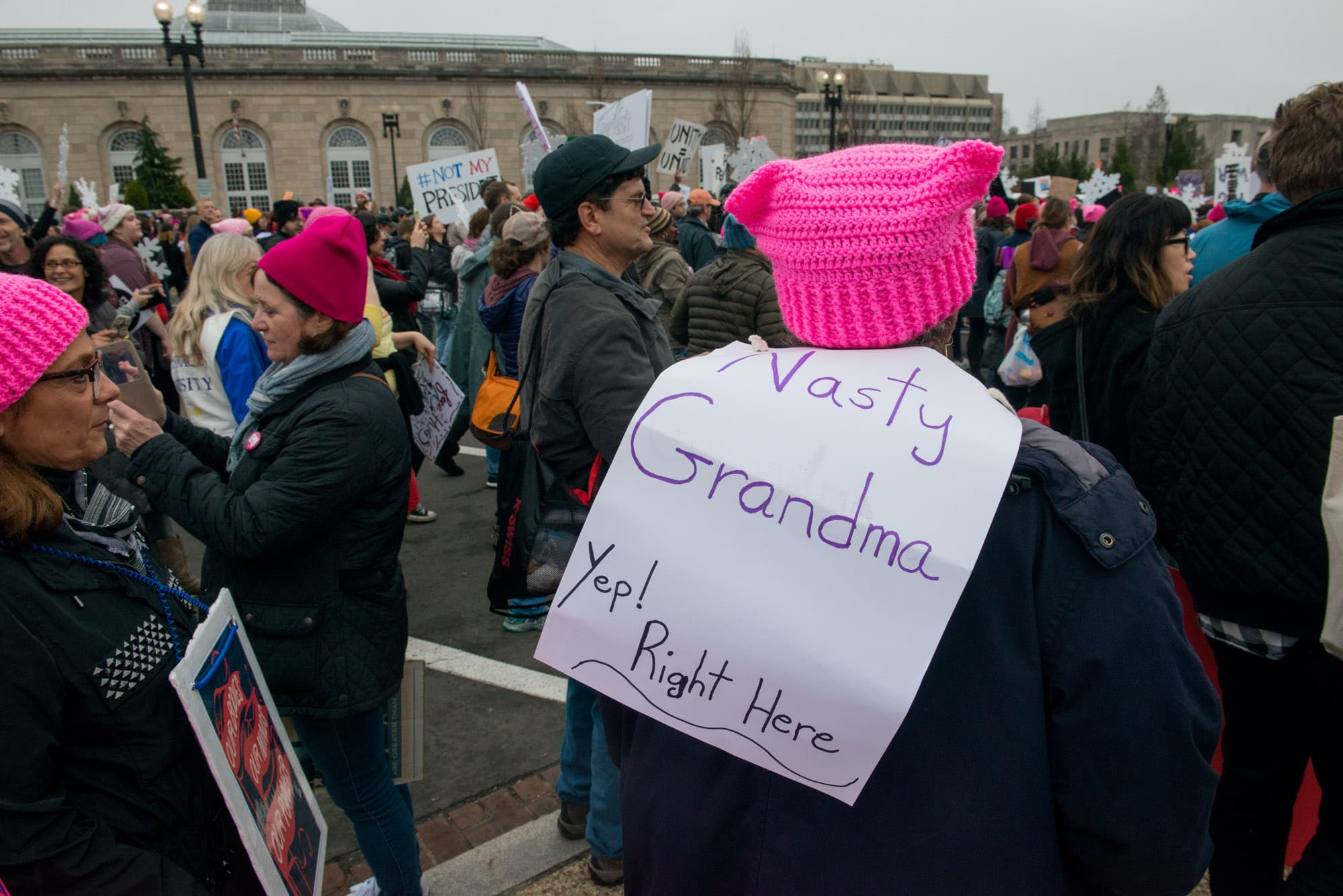 Womens_March_on_Washington_018