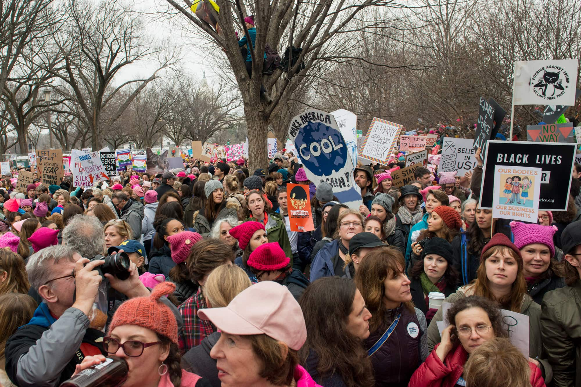 Womens_March_on_Washington_023
