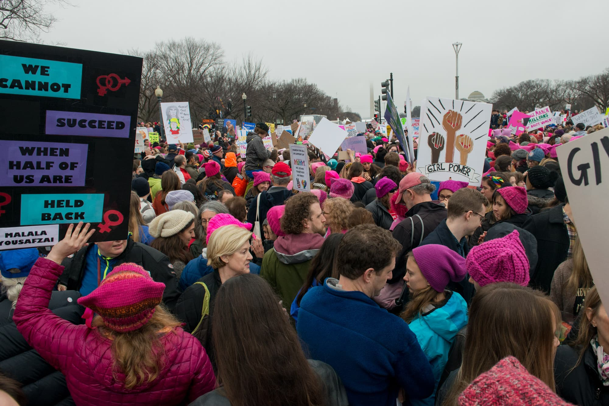 Womens_March_on_Washington_026